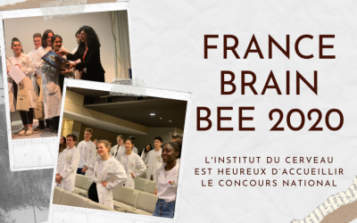 France Brain Bee 2020 2nd edition online